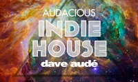 Running music mix entitled Audacious Indie House from Rock My Run