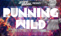 Running music mix entitled StoneBridge Presents Running Wild from Rock My Run